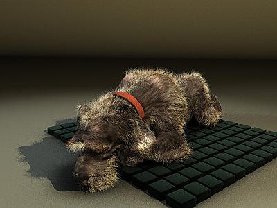 Cliquez sur l'image pour la voir en taille réelle  Nom : Doggy02b.jpg Affichages :212 Taille :123,1 Ko ID : 20897