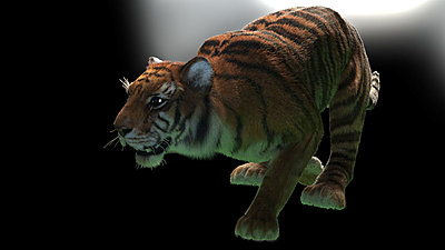Cliquez sur l'image pour la voir en taille réelle  Nom : TigerHair_RS_02_Debug_r1.jpg Affichages :28 Taille :116,1 Ko ID : 18343