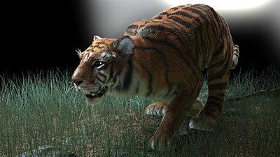 Cliquez sur l'image pour la voir en taille réelle  Nom : TigerHair_RS_03 r1.jpg Affichages :36 Taille :297,3 Ko ID : 18360
