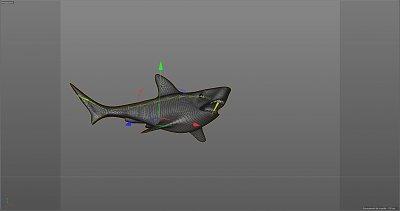 Cliquez sur l'image pour la voir en taille réelle  Nom : requin 2.JPG Affichages :5 Taille :176,8 Ko ID : 22568