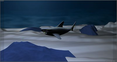 Cliquez sur l'image pour la voir en taille réelle  Nom : requin.JPG Affichages :5 Taille :174,1 Ko ID : 22567