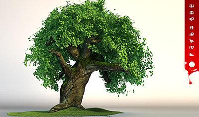 Cliquez sur l'image pour la voir en taille réelle  Nom : arbrelow.jpg Affichages :101 Taille :102,0 Ko ID : 2105