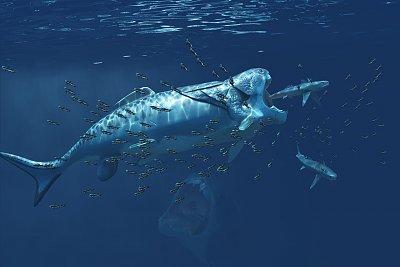 Cliquez sur l'image pour la voir en taille réelle  Nom : devonien-sous-marin-vue-3.jpg Affichages :20 Taille :225,0 Ko ID : 23265