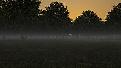 Cliquez sur l'image pour la voir en taille réelle  Nom : Forest_rs_NightFog_01_r1_27s.jpg Affichages :7 Taille :120,2 Ko ID : 18407
